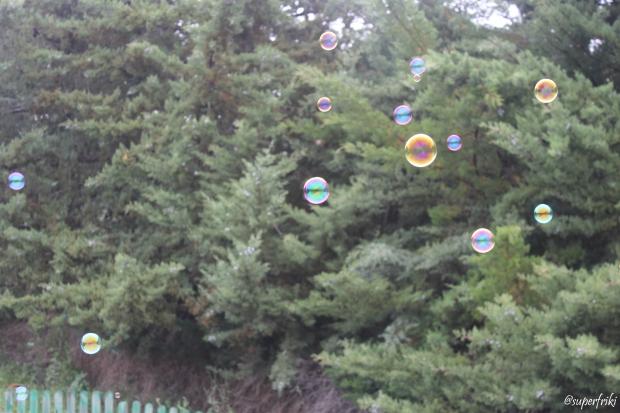 burbujasarboles