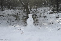 muneco-de-nieve