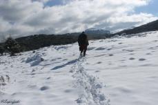 paisaje-nieve-ronda