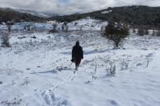 sierra-de-las-nieves-ronda